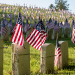 American flags placed on graves in a graveyard